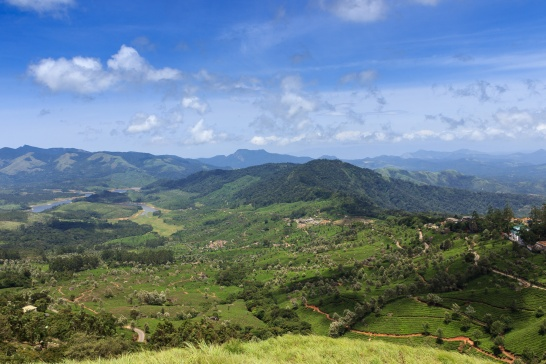 Photograph of Munnar Landscape